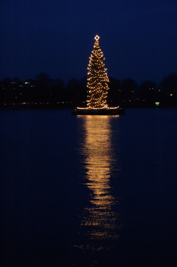 Xmas tree on water